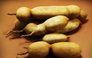 Tamarind Manufacturer and Exporter from India